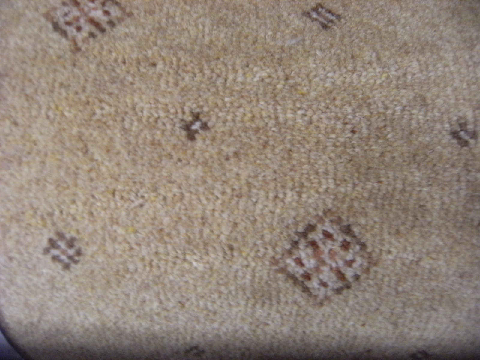 Stock Carpets From Carpet King Discount Carpets And